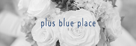 plus blue palace